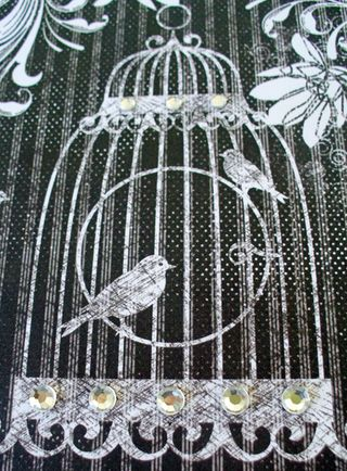 Bird cage close up
